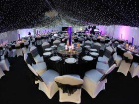Wedding Ideas by Professionals