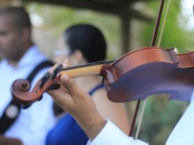 Wedding Band Musicians