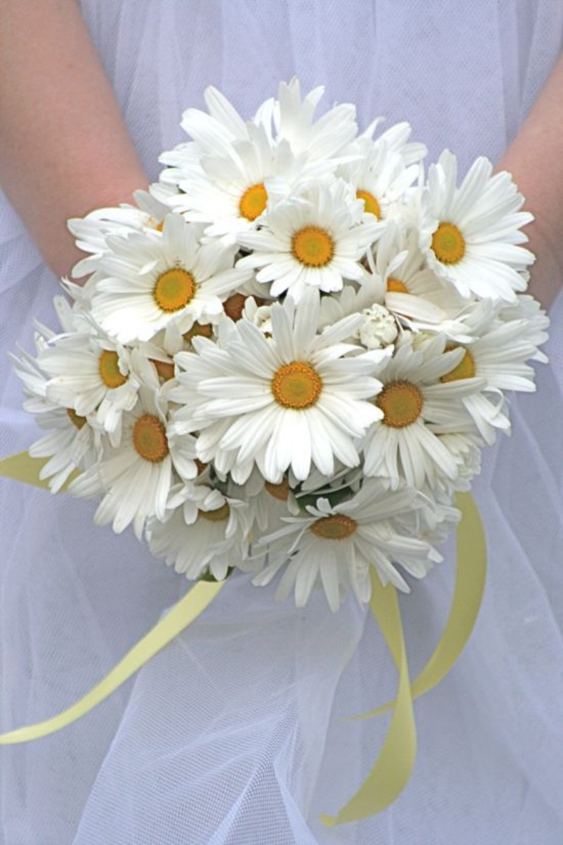 Daisy flower bouquet