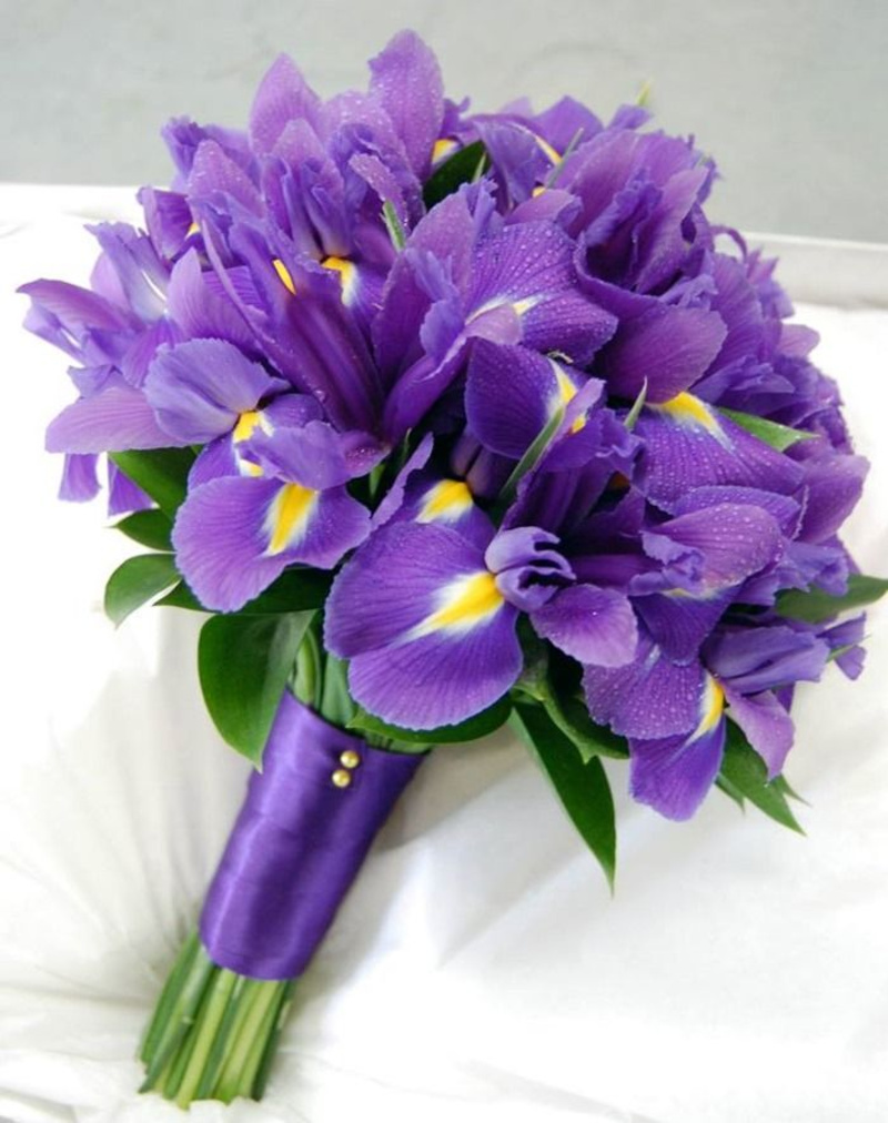 Iris flower bouquet